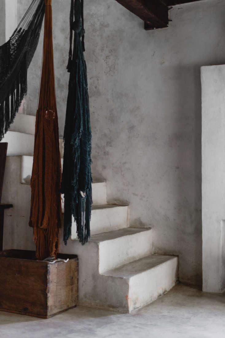 coqui coqui coba stairs, photo by cerruti draim 23