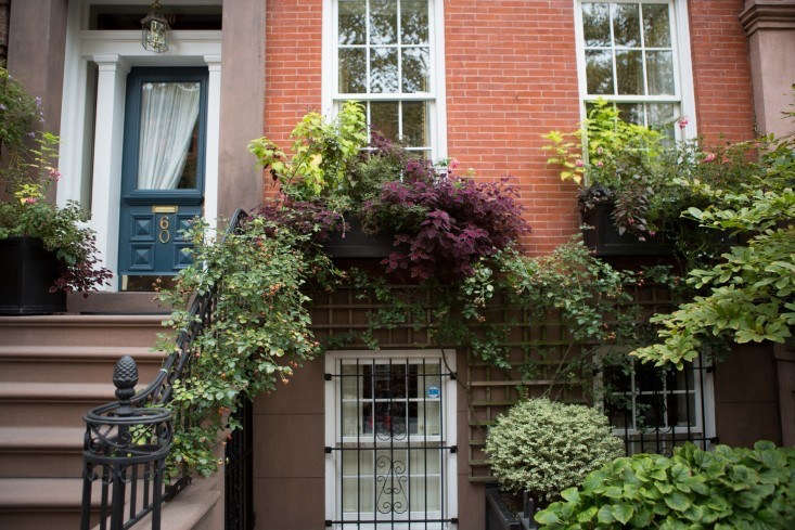 for the urban or small space gardener: container gardens: 5 tips for a perfect  13