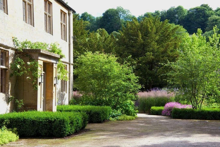 boxwood, clipped or left wild, creates a verdant entryway. for ideas, seeboxw 9