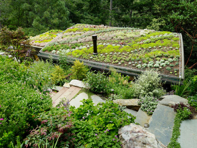 green roof, mill valley cabins, mill valley, california photo: joe fletcher 39