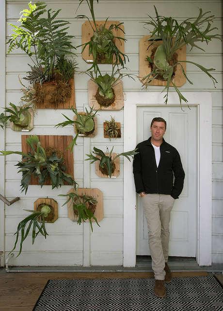 staghorn fern garden: designer daniel nolan seen with his home vertical garden  23