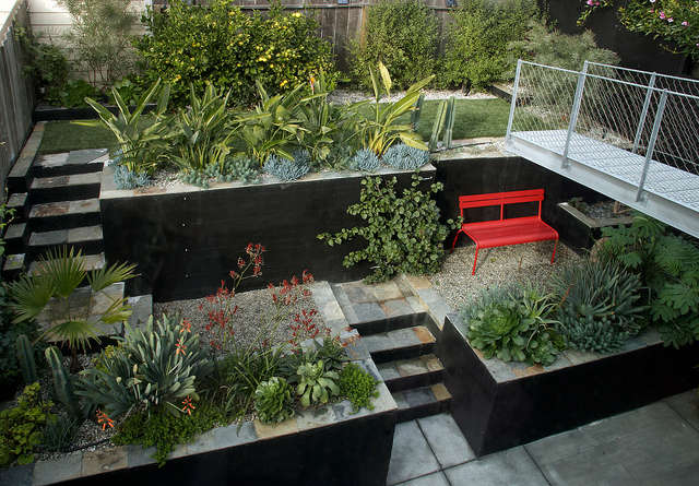 potrero hill garden: daniel nolan&#8\2\17;s exuberant planting design revel 24