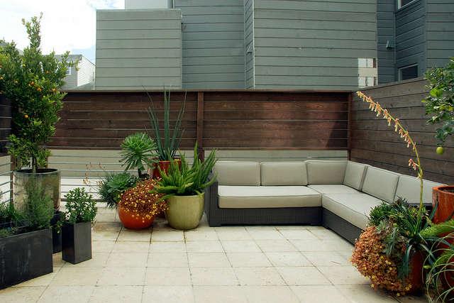 a san francisco terrace garden &#8\2\1\1; patrick lannan&#8\2\17;s desi 18