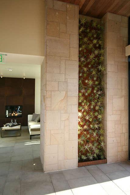 bardessono hotel vertical garden: a vertical garden design by flora grubb in co 19