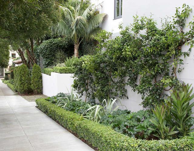 neighborly elegance &#8\2\1\1; flora grubb gardens staff designer daniel no 14