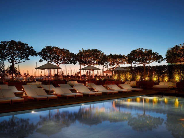 waikiki marriott edition hotel: the silhouettes of indigenous autograph trees a 16