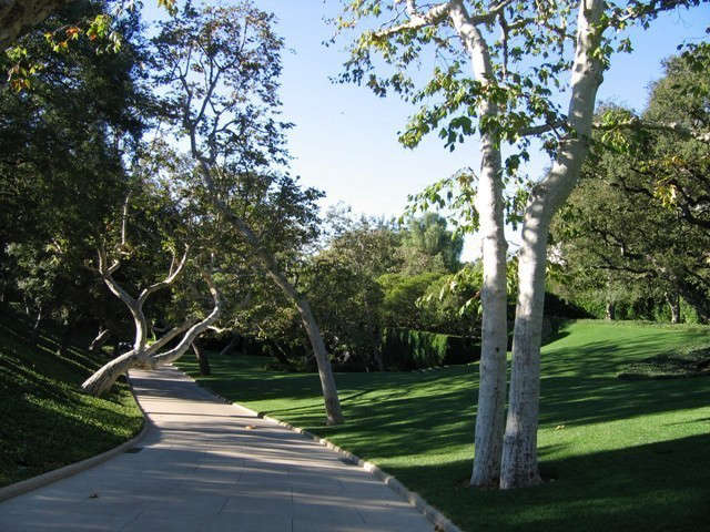 \10 acre southern california residence.: plane trees cast a dappled shade acros 15