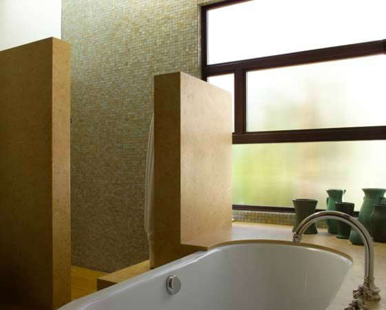 Hollander Tub and Shower