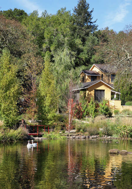 Rancho Minerio, Sonoma County, CA