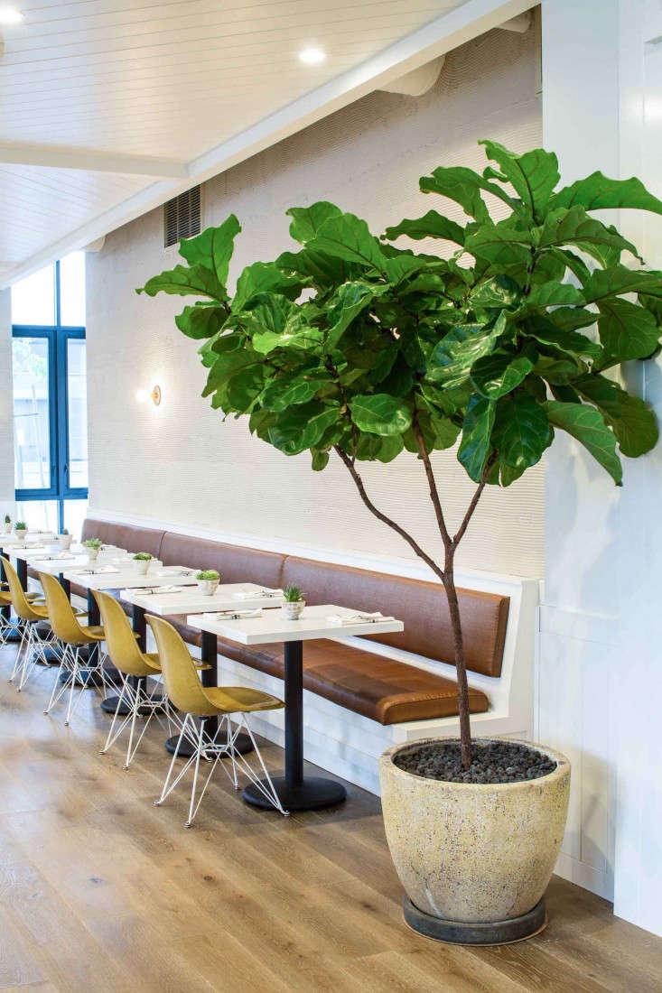 Macram Revisted Cafe Gratitude in Downtown LA portrait 11