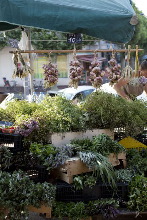 Herbs Gone Wild A French Alchemist at Market portrait 4