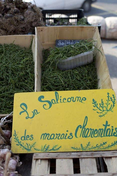 Herbs Gone Wild A French Alchemist at Market portrait 9