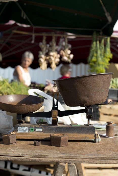 Herbs Gone Wild A French Alchemist at Market portrait 11