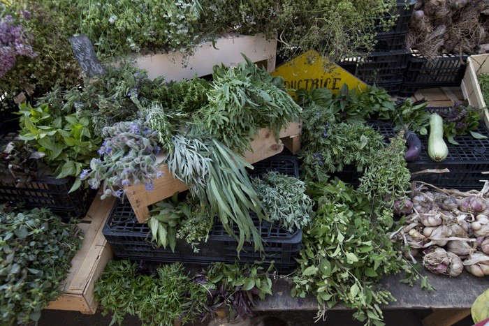 Herbs Gone Wild A French Alchemist at Market portrait 7