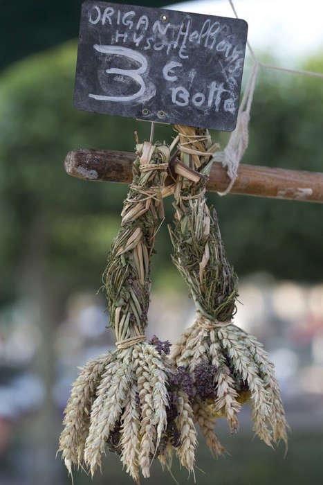 Herbs Gone Wild A French Alchemist at Market portrait 8