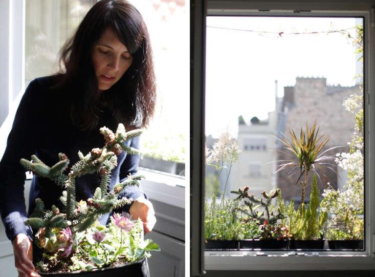 Clarisse Demory Planter Windowbox