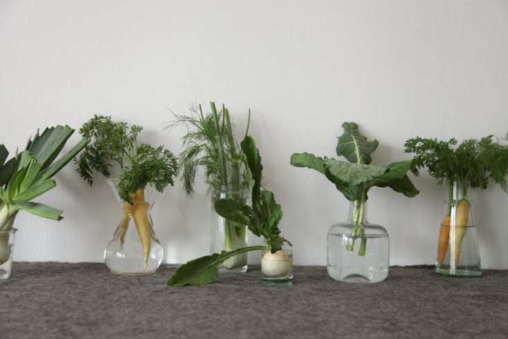 DIY Vegetables as Decor Alexa Hotz Remodelista 05