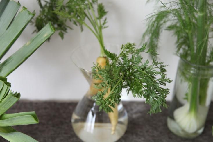DIY Vegetables as Decor Alexa Hotz Remodelista 08