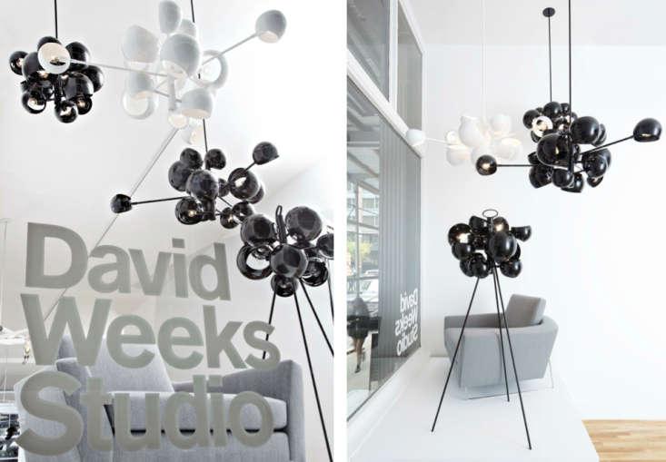 Spotlight David Weeks New Tribeca Studio portrait 3