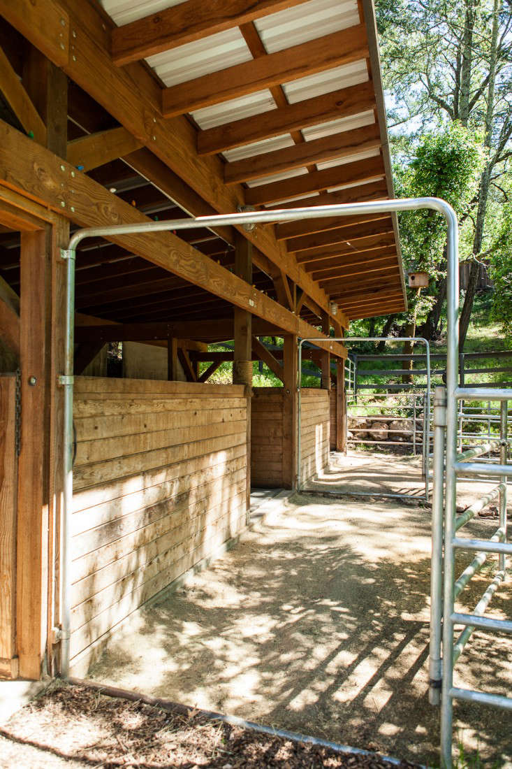 Dione stables 4