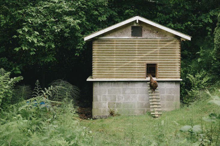 The New Homesteaders Chelsea and James Minolas Craftsman Quarters on Bainbridge Island portrait 15