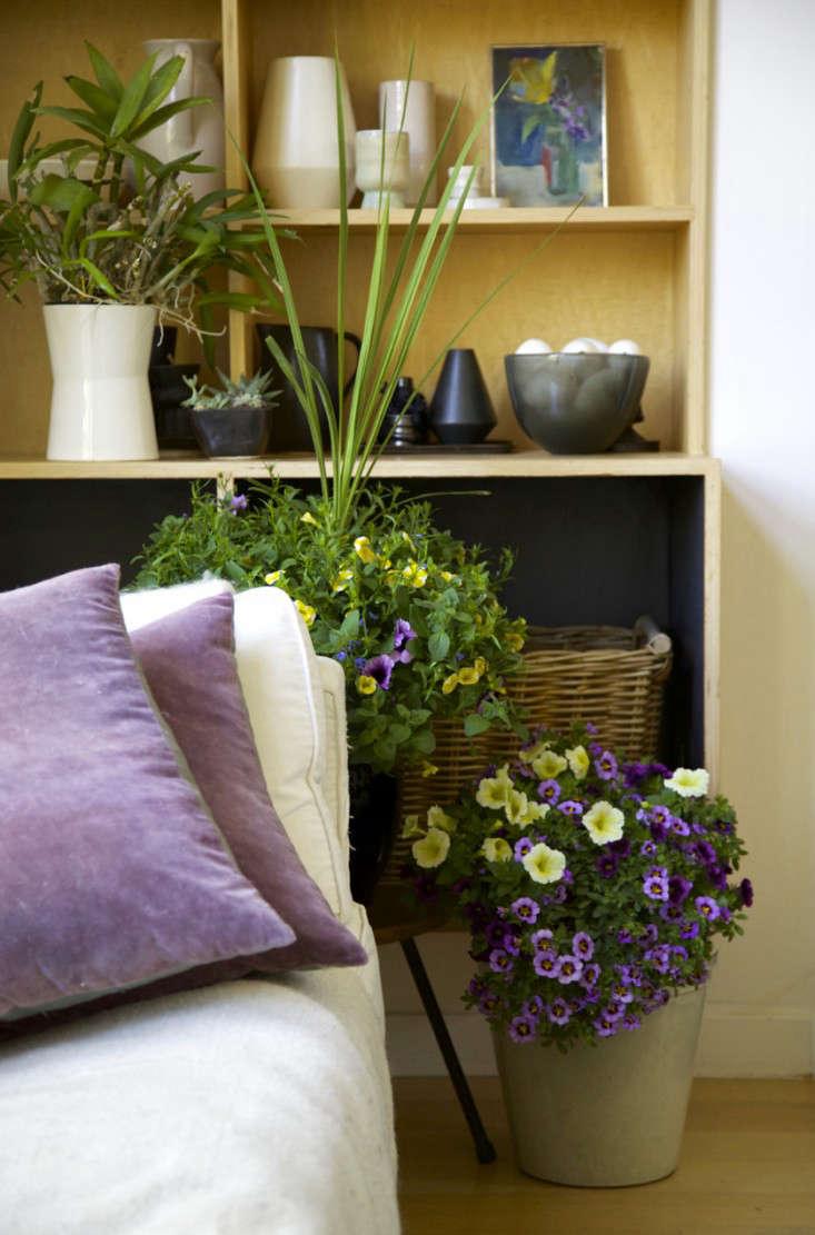 Indoor Gardening An Easy Spring Update portrait 7