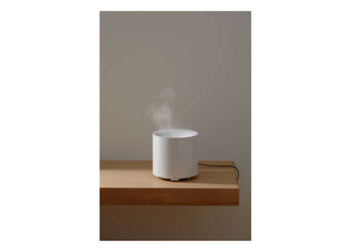 Humidifier S Naoto Fuakawa