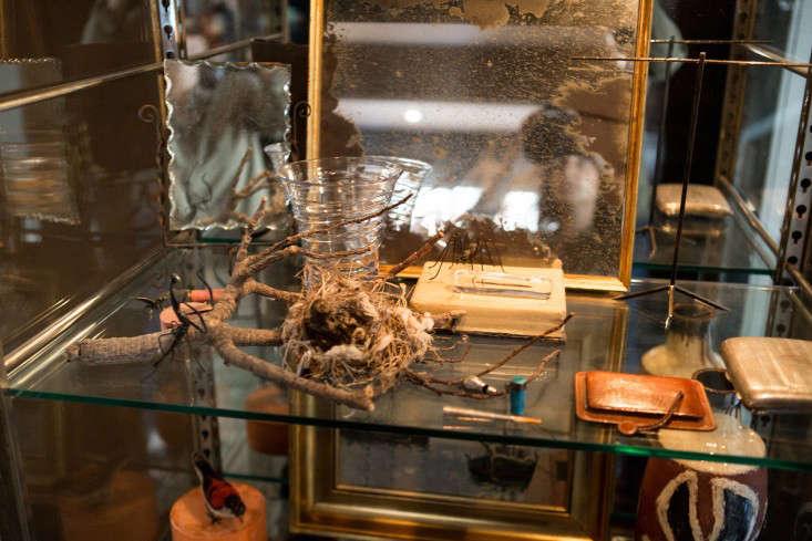 Dastardly by Design ModernDay Alchemist Jane Hallworth in LA portrait 11