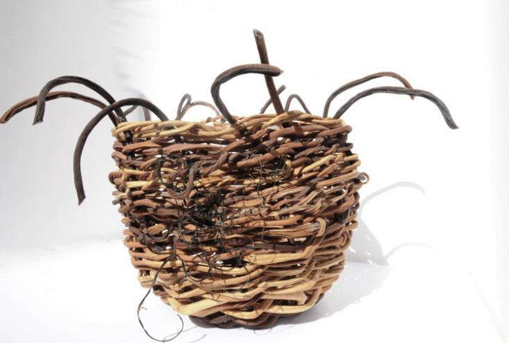 Design Sleuth Kelp Baskets from Inverness portrait 4