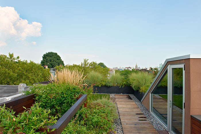 The Architect Is In A Brooklyn Townhouse Grows Around a Roof Garden portrait 9
