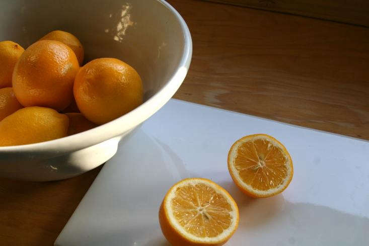 the acid in lemon makes it an ideal cleaning agent. photograph by sarah lonsdal 12