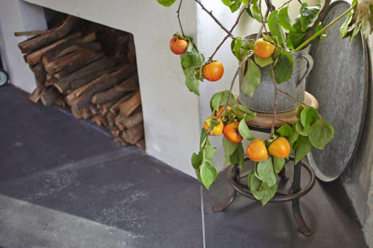 Parkside Holiday Table persimmon