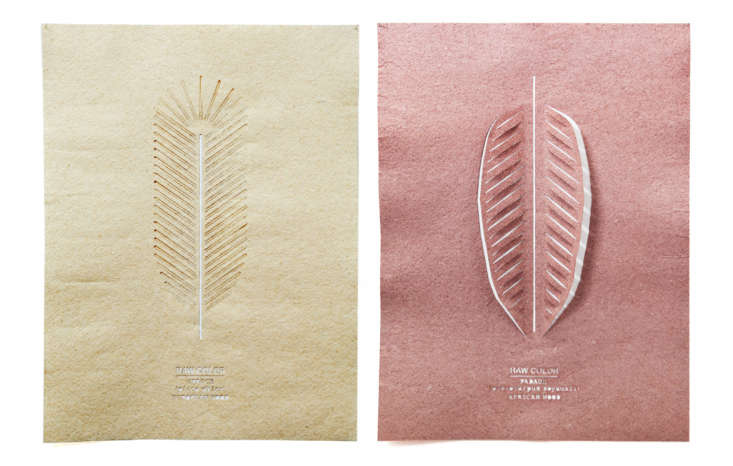 Raw Color Paper Shades 01