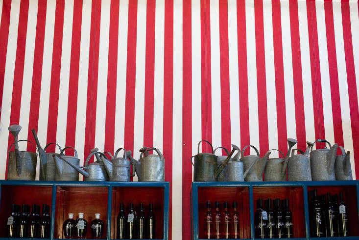 Swanson vineyards striped interior