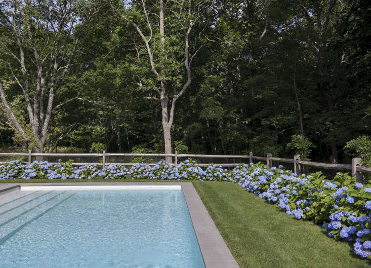 Rhapsody in Blue A Finnish Stylist at Home in the Hamptons portrait 16