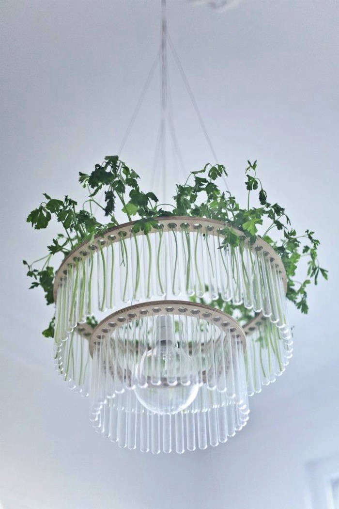 Garden in the Sky Test Tube Chandeliers from Poland portrait 5
