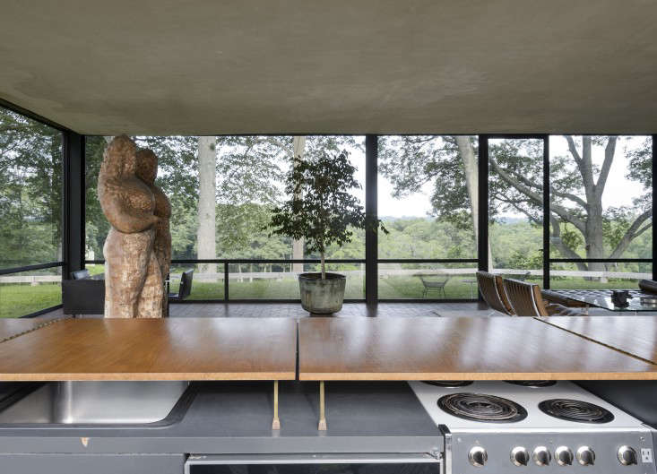14 Lessons in Minimalism from the Glass House portrait 11