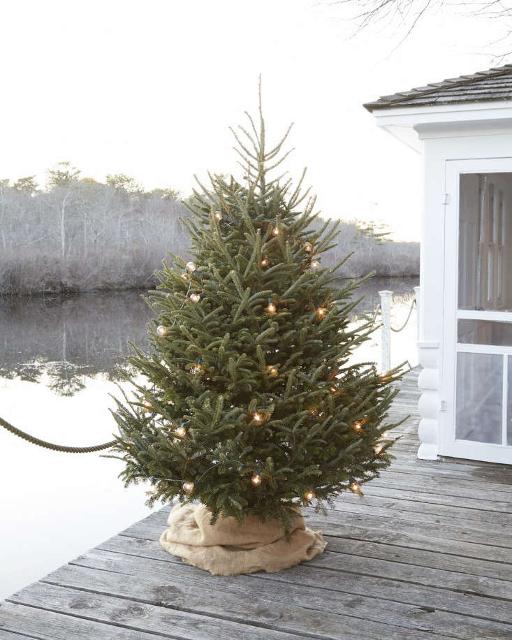 The Simple Life 10 Christmas Holiday Tips from Tricia Foley portrait 4