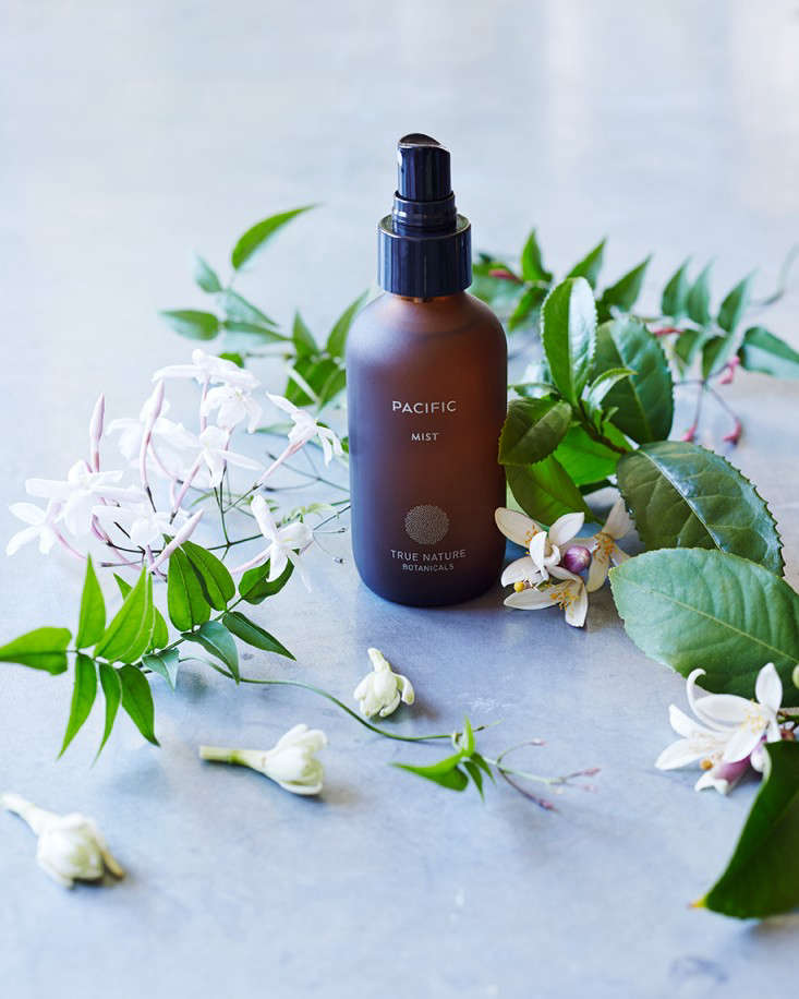 Serious Luxury Plus a Free Gift from True Nature Botanicals Holiday Edition portrait 8
