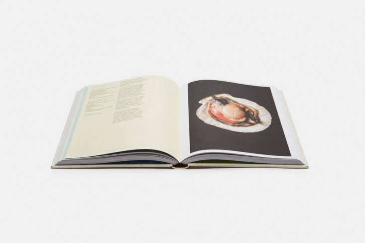 The Best Cookbooks for Holiday Gifts 2015 Edition portrait 4