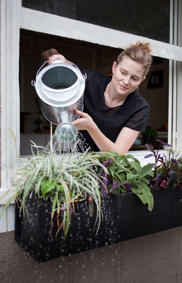 diy window b xes gardenista