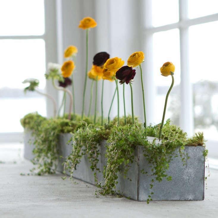 galvanized metal planter trough skinny gardenista 0