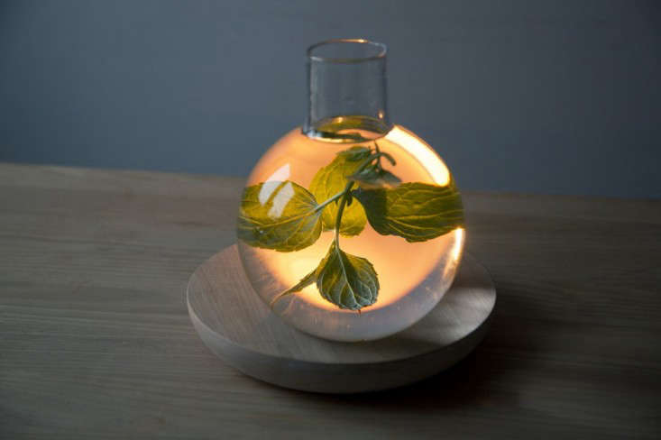 liquid light kristine five melvaer 06