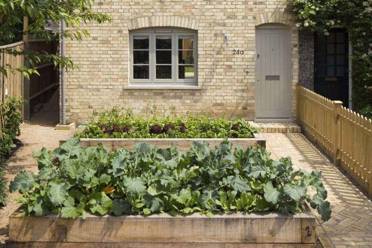 london edible garden dorset sam tisdall 2 gardenista