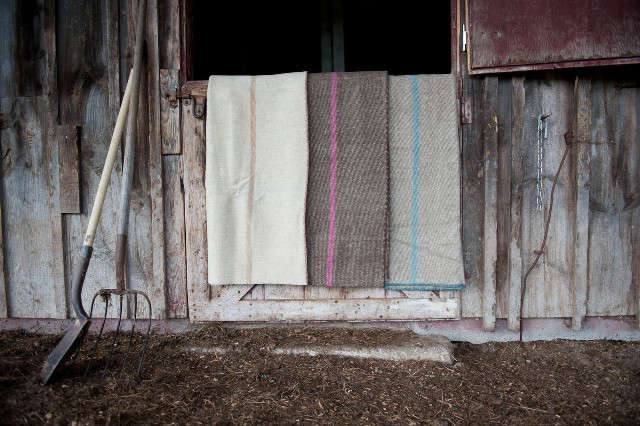 Announcing Our First Remodelista New England Market with Lekker Home portrait 8