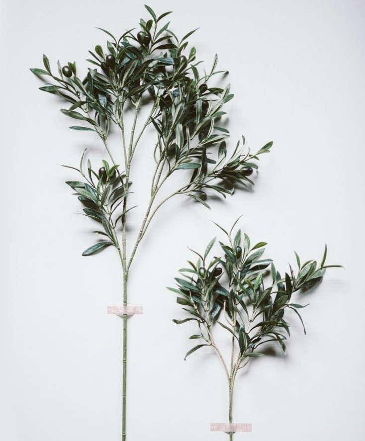 Design Sleuth A LowMaintenance Olive Branch Arrangement portrait 5