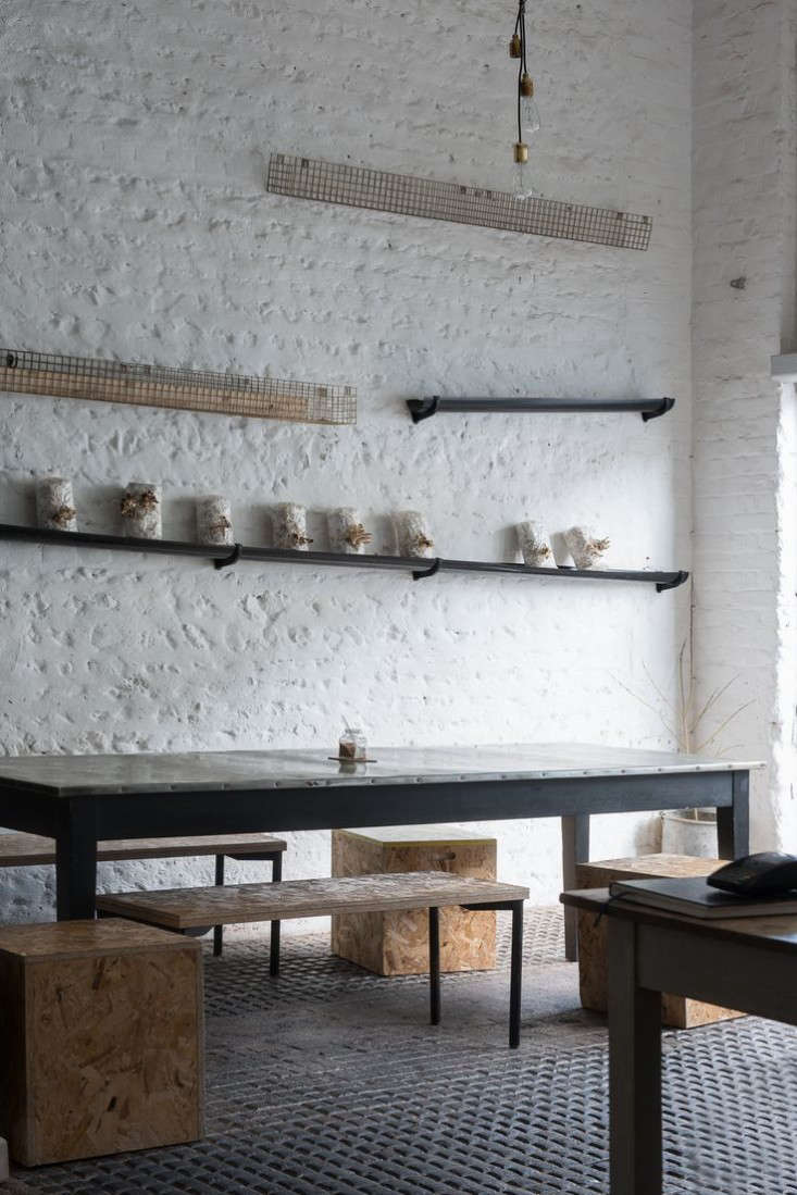 silo cafe brighton 1