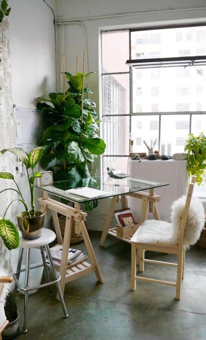 An office that feels like an indoor garden, anyone? Fashion designer Shaina Mote&#8