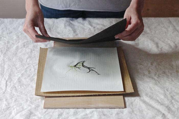 DIY  20  seaweed  20  prints  40    20  step  20  4