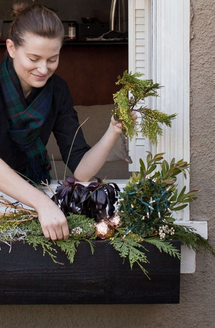 Decorating  20  Holiday  20  Window  20  Boxes  20  with  20  Cedar  20  and  20  Succulents  40    20  Meredith  20  Swinehart  40    20  Gardenista